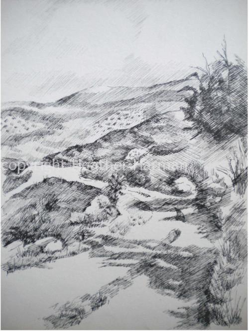 Spain - pen